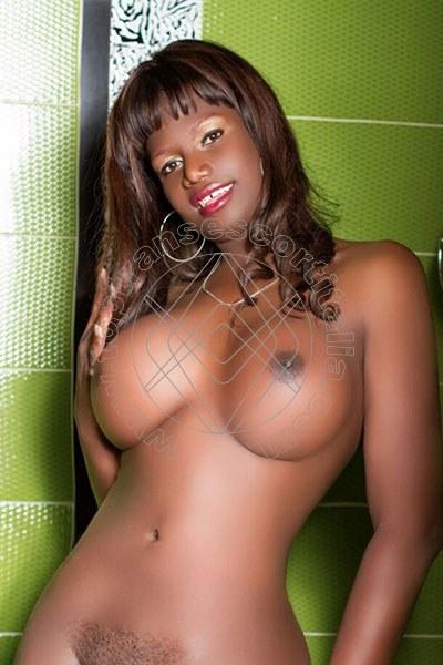 Melissa Trans PESCARA 3510705743