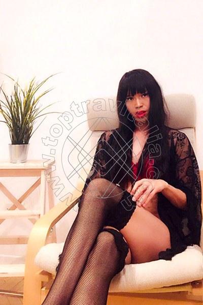 Ella Asiatica MODENA 3297524926